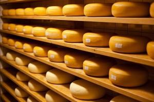 Laibe von Raclette-Käse